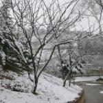 το πάρκο τον χειμώνα