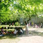 """Οι σχολικές εκδρομές στο """"Πάρκο Ηπειρωτών"""""""